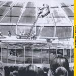 【海洋公園】乘坐小船觀賞海洋生物? 海洋公園最初的設計